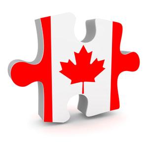 CDN flag puzzle piece